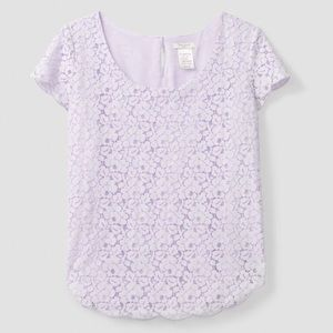 Babaton Betsy Lace Top in Lilac